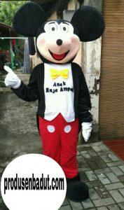 Produsen Badut Mickey Mouse Anak Raja Ampat Papua