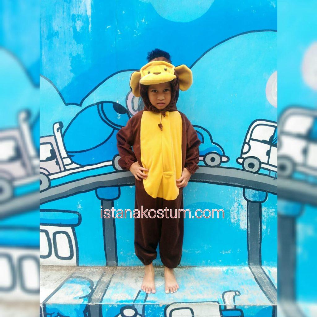 Kostum Anak Karakter Hewan Harga Terjangkau